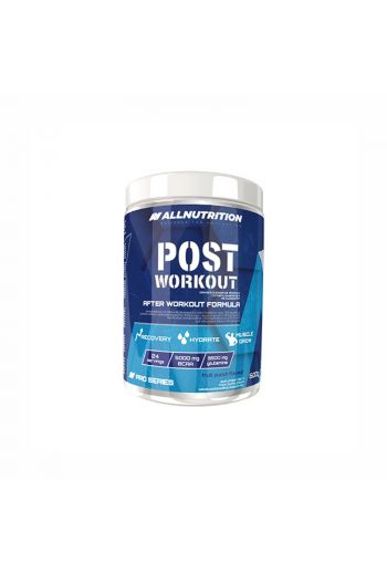 POST WORKOUT PRO SERIES 600g Fruit punch / AN