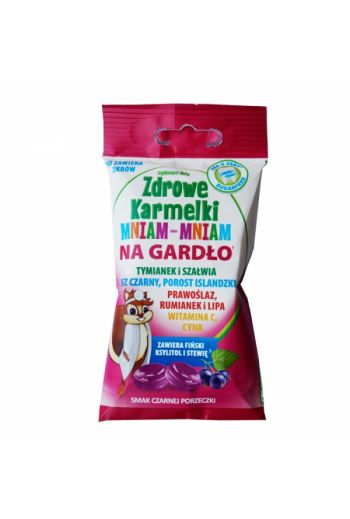 HEALTHY PASTILLES FOR THROAT BLACKCURRANT 10 PCS / ZDROWE KARMELKI NA GARDŁO 10 SZTUK