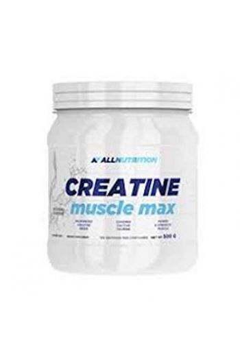 CREATINE MUSCLE MAX 500g / AN