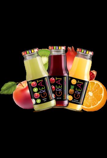 GREAT Juice /Sok GREAT 0,3l