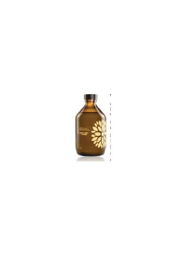 Vigo Kombucha Organic Live Tea Acerola+Ginger 300ml